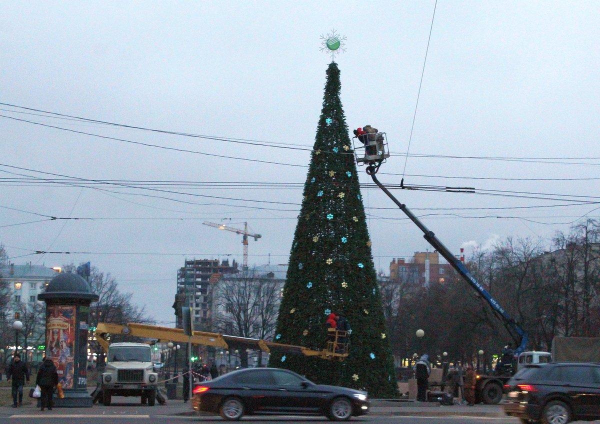 Площадь Горького украсила новогодняя елка - фото 1