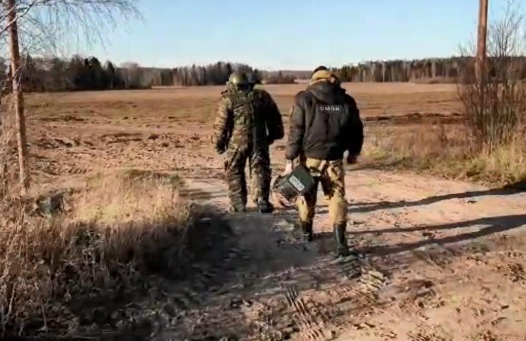 Боевой артиллерийский снаряд обнаружили жители Городецкого района - фото 1