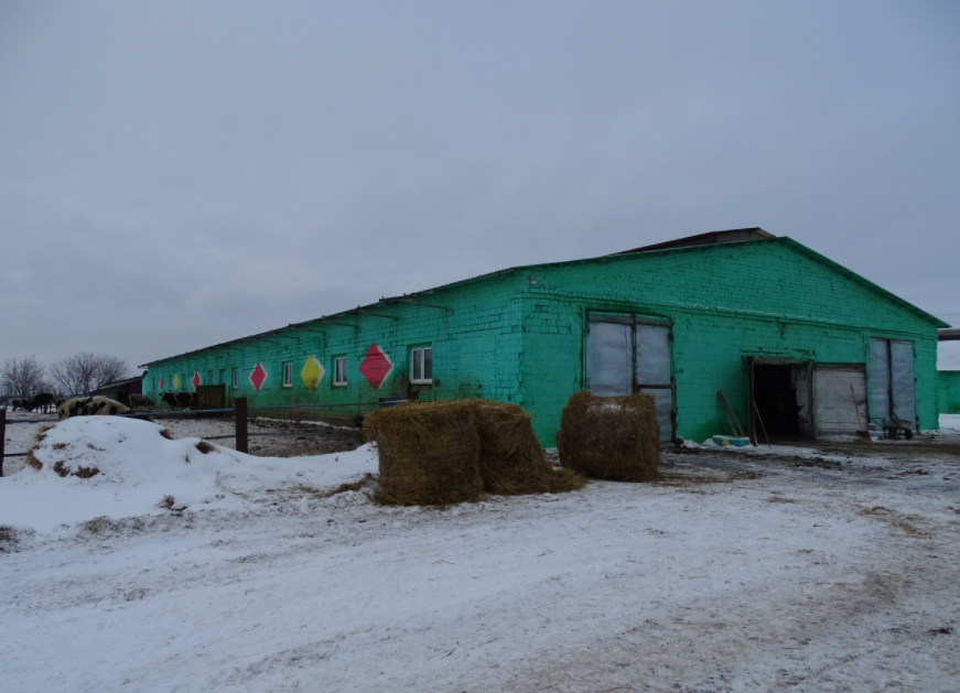 Сельхозпредприятие «Румянцевское» выставлено на продажу в Нижегородской области за 130 млн рублей - фото 1