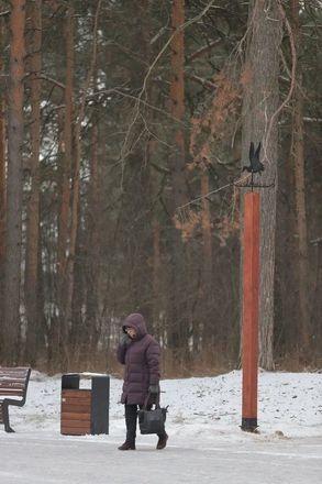 Необычные флюгеры в виде уток появились в Дзержинске - фото 3