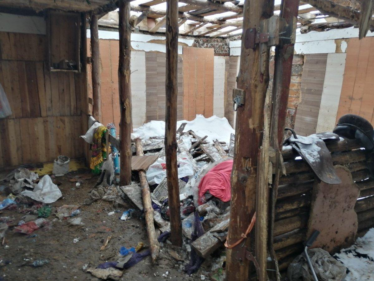 Владелица дзержинского «концлагеря» для лошадей прокомментировала  обвинения в свой адрес - фото 3