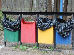 Раздельный сбор мусора предложено ввести в нижегородских школах