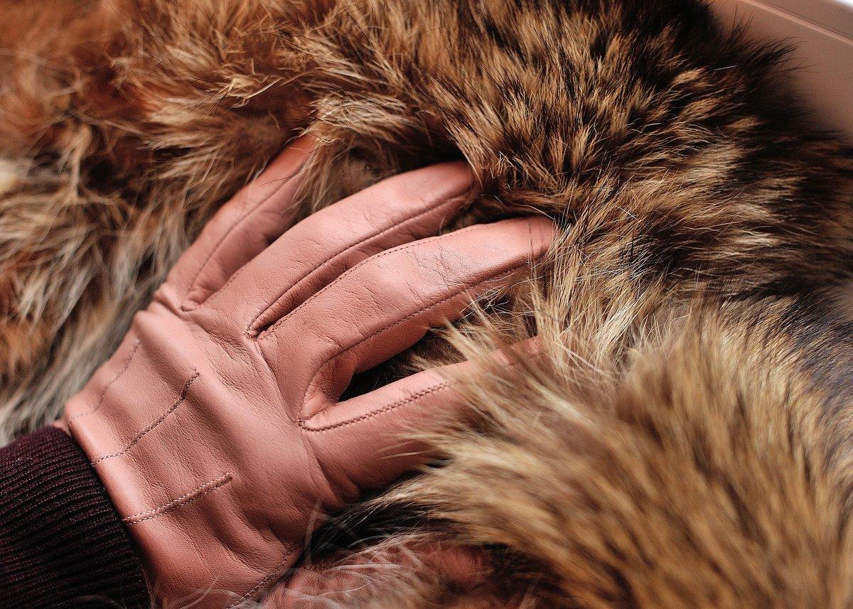 Стоит ли покупать экошубу: плюсы и минусы одежды из искусственного меха - фото 2