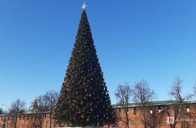 Главную городскую елку нарядили в Нижнем Новгороде - фото 5