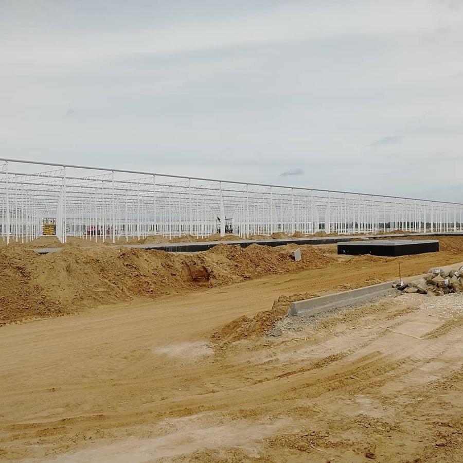 Крупнейший в регионе тепличный комплекс инвестор введет в эксплуатацию на Бору до конца года - фото 1