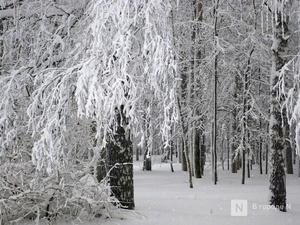 Метель и сильные снегопады надвигаются на Нижегородскую область