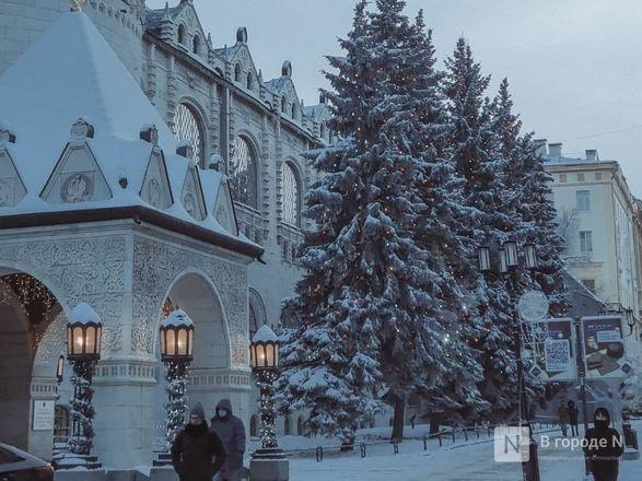 Как Нижний Новгород пережил аномально морозные дни  - фото 12