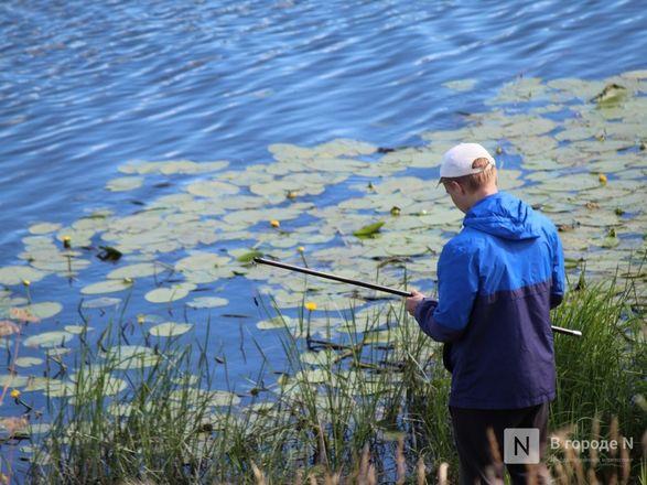 Праздник в пандемию: как Нижний Новгород отметил 799-летие - фото 29