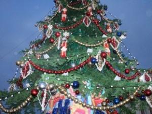 В министерстве ЖКХ Нижегородской области предложили делать новогодние игрушки из мусора