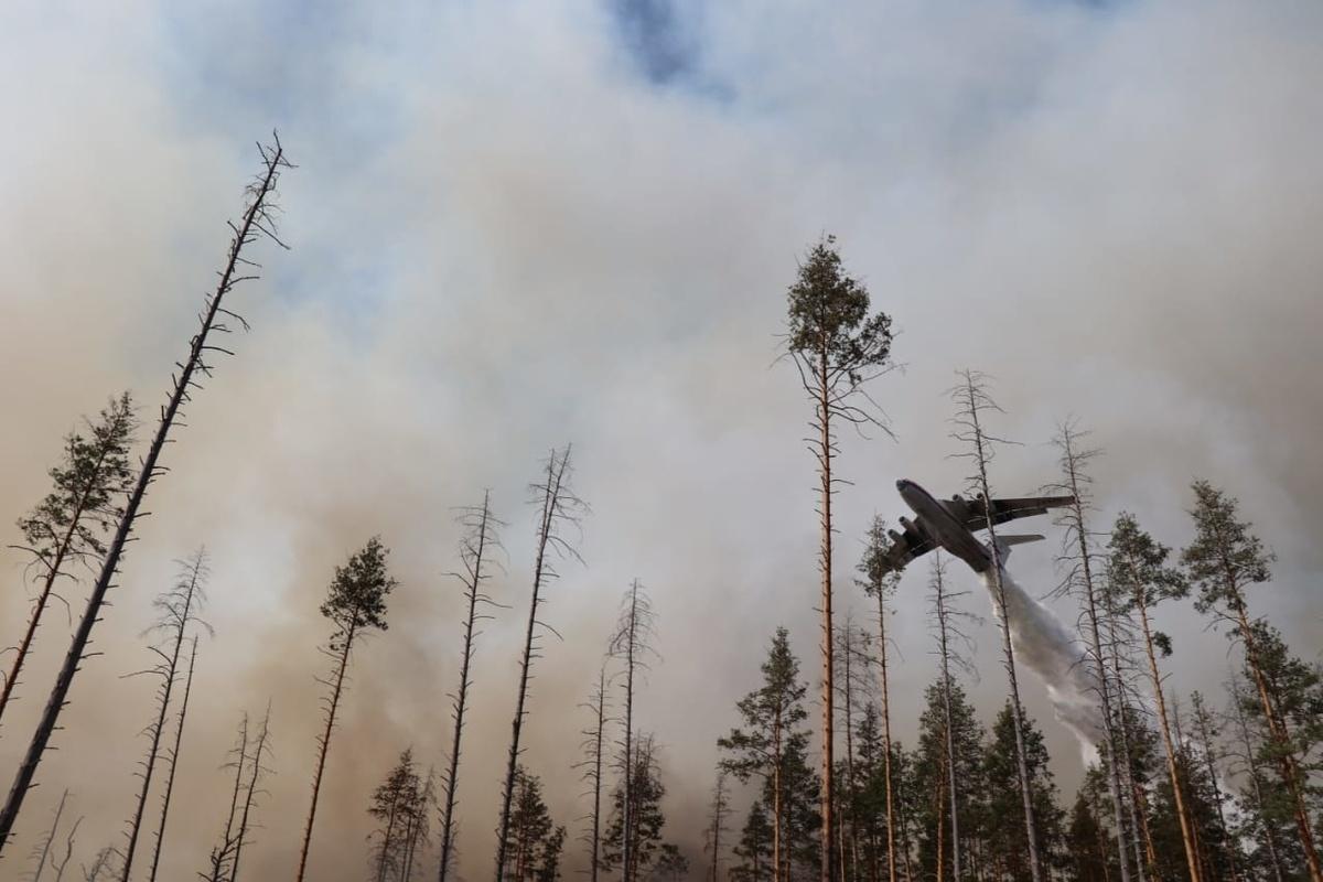 Нижегородцы жалуются на запах дыма - фото 1