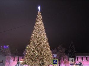 Главную новогоднюю елку в Нижнем Новгороде смонтируют к 20 декабря