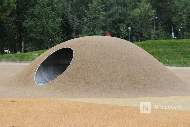 52 гектара для отдыха: Как изменился парк «Швейцария» - фото 16