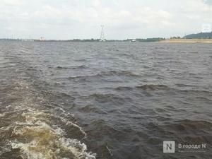 Более 600 км браконьерских сетей изъято в Нижегородской области в 2020 году