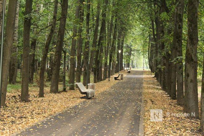 52 гектара для отдыха: Как изменился парк «Швейцария» - фото 75