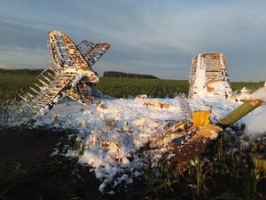 Специалисты устанавливают пилота разбившегося в Большеболдинском районе самолета