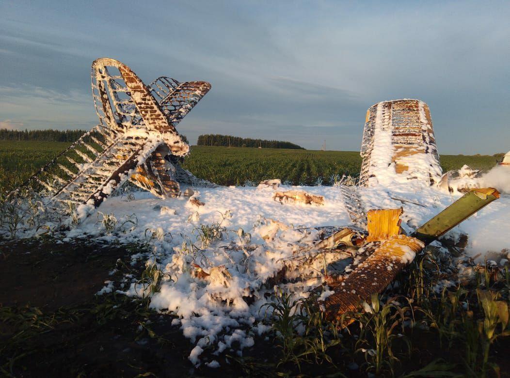 Специалисты устанавливают, кто управлял самолетом Ан-2, разбившимся в Большеболдинском районе - фото 1