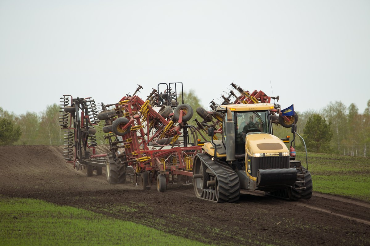 На 85% выполнен план посева яровых культур в Нижегородской области - фото 1