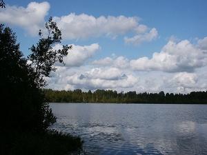 Территорию вокруг озера Светлояр в Воскресенском районе приведут в порядок