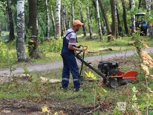Более 5,5 млн рублей выделено на благоустройство парка «Золотая пчела» в Чернухе