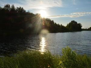 Озеро Карасное в Бутурлинском районе возьмут  под государственную охрану