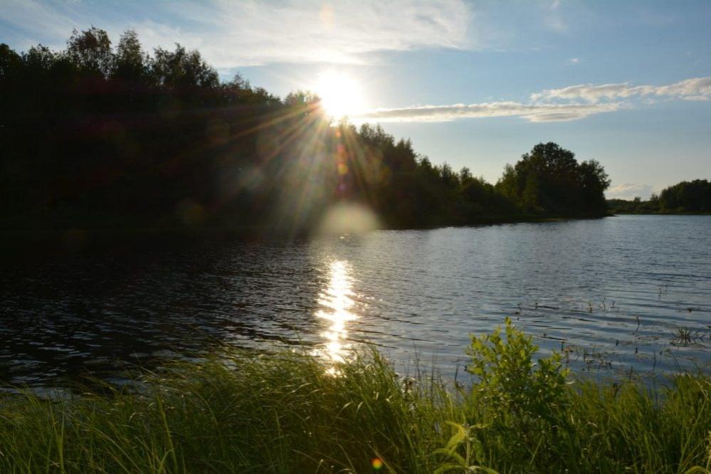 Озеро Карасное в Бутурлинском районе возьмут  под государственную охрану - фото 1